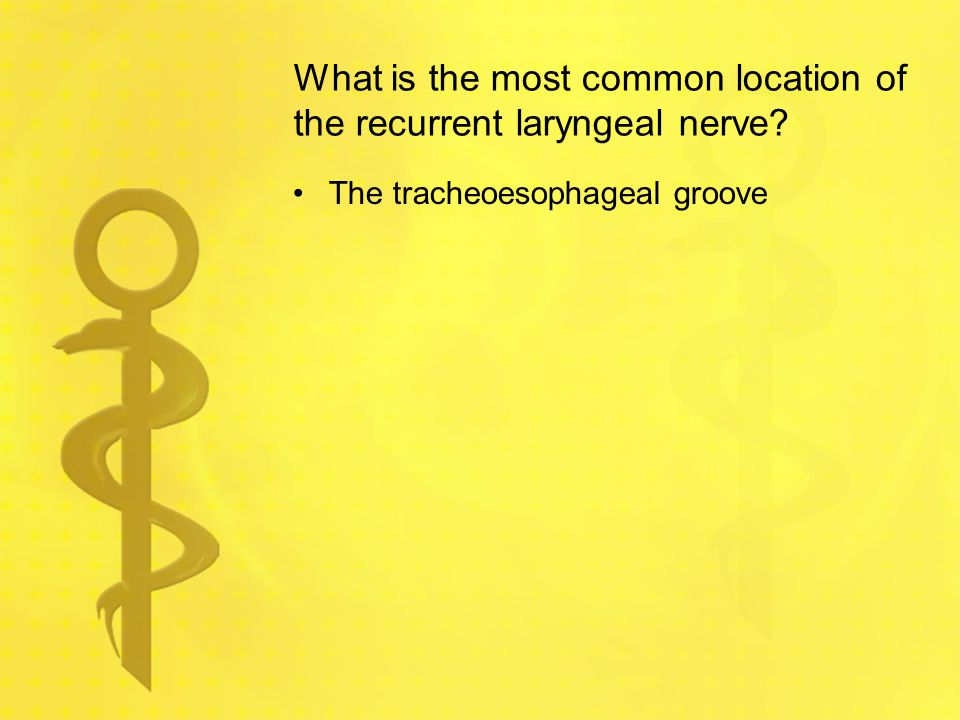 What is the most common location of the recurrent laryngeal nerve