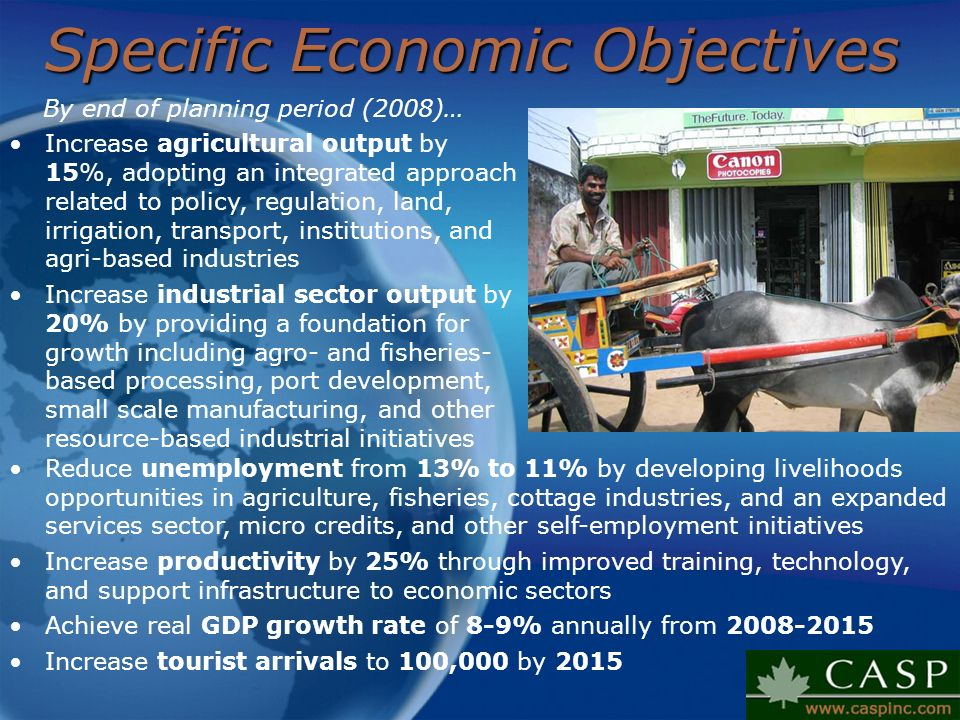 Specific Economic Objectives