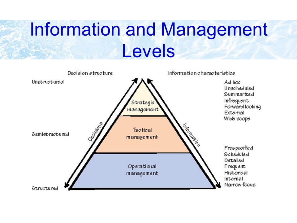 Information and Management Levels