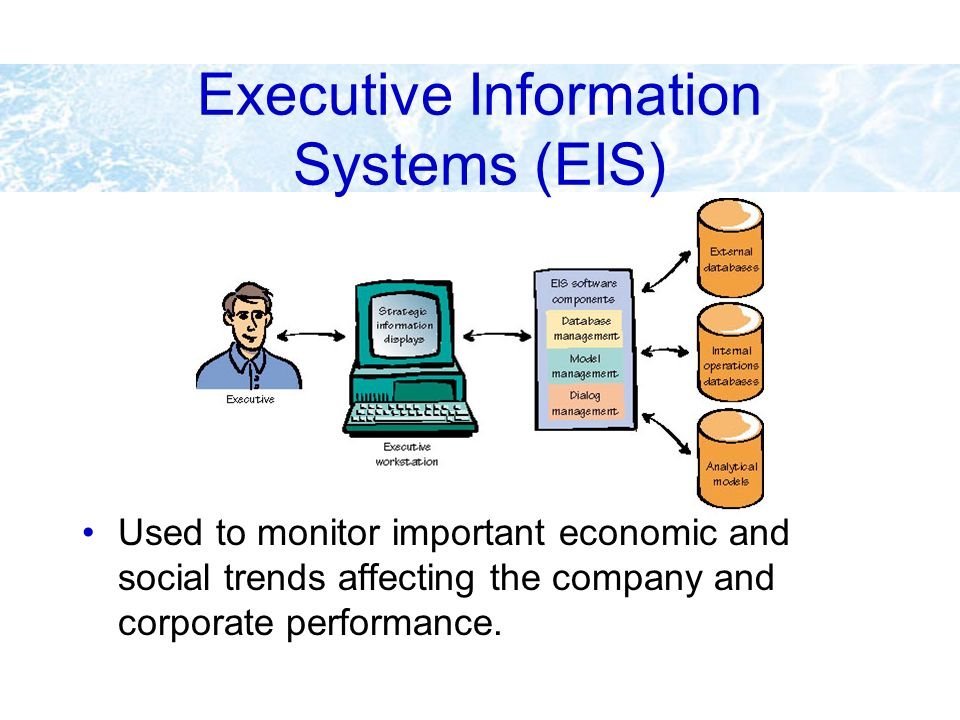 Executive Information Systems (EIS)