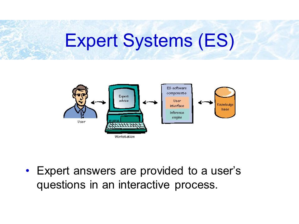 Expert Systems (ES) Expert answers are provided to a user's questions in an interactive process.