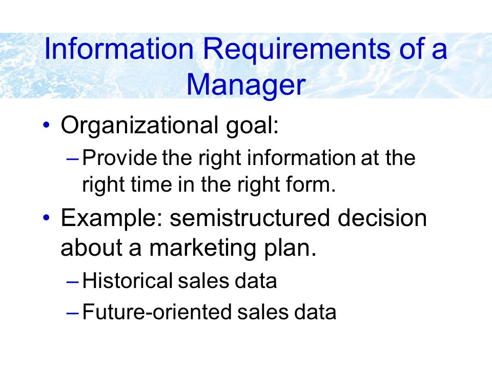 Information Requirements of a Manager