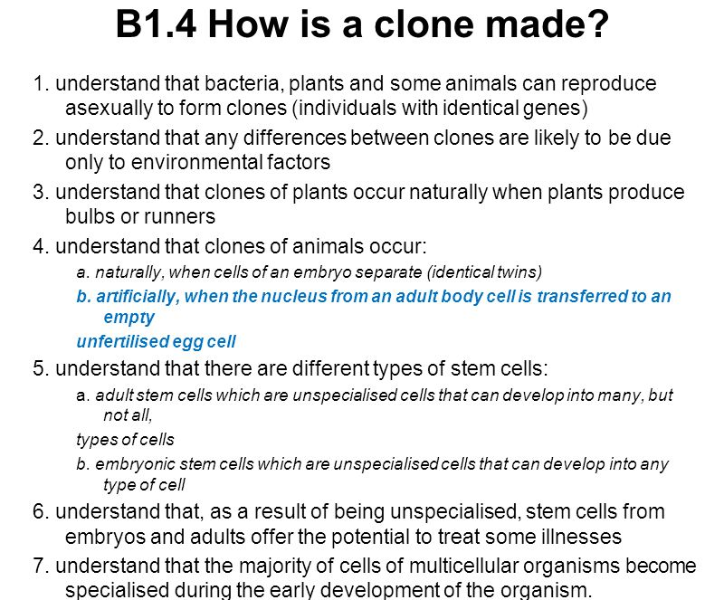 B1.4 How is a clone made