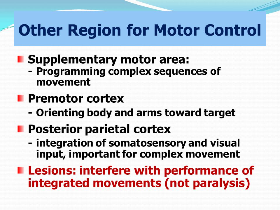 Other Region for Motor Control