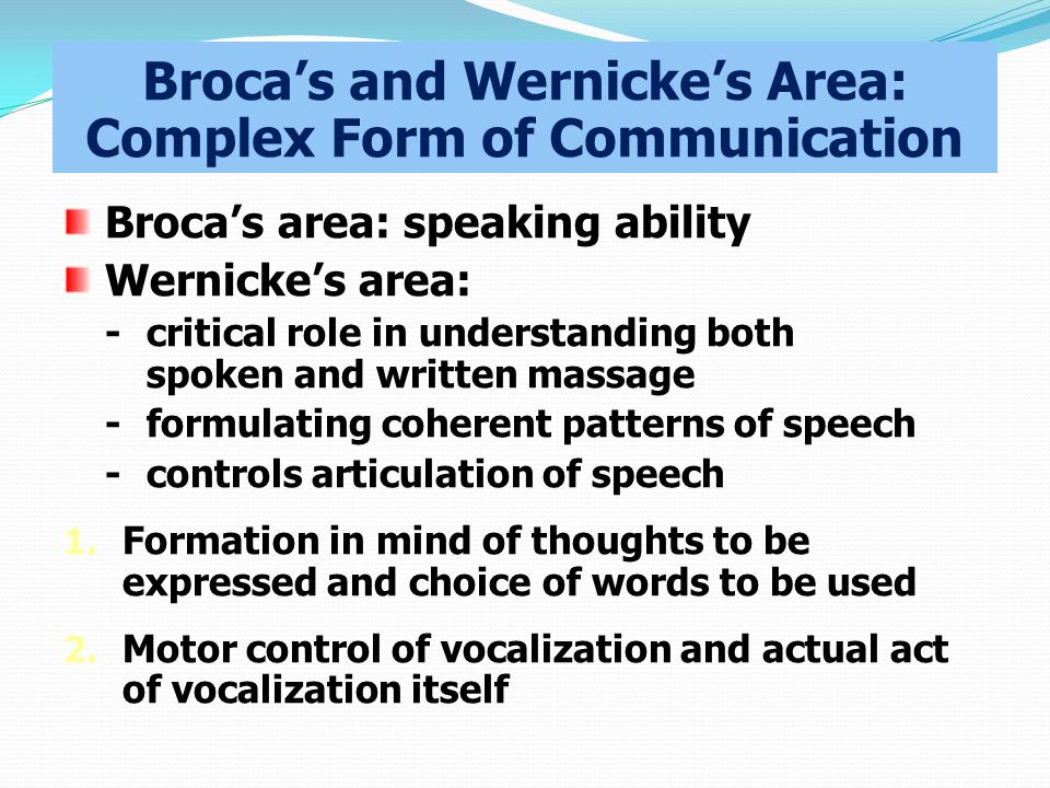 Broca's and Wernicke's Area: Complex Form of Communication