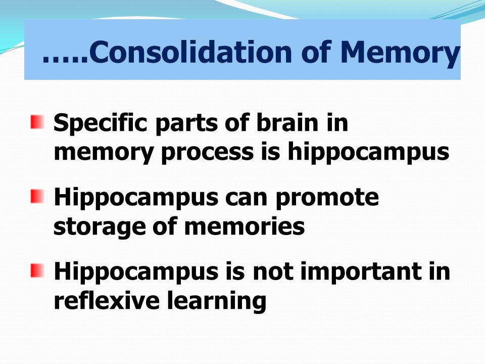 …..Consolidation of Memory