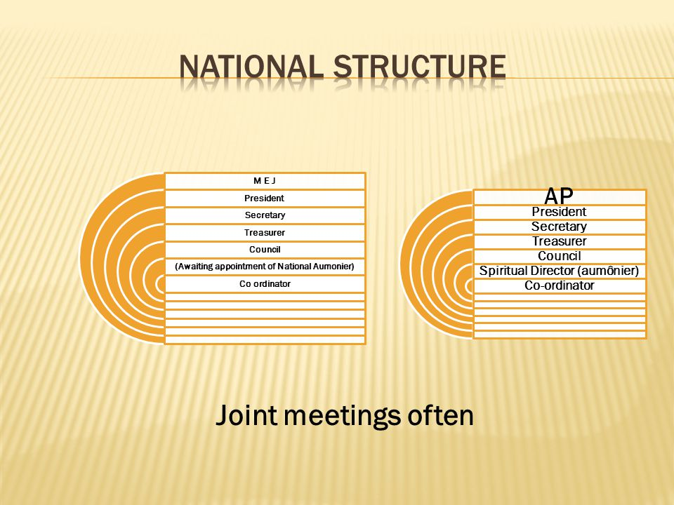 NATIONAL STRUCTURE Joint meetings often AP President Secretary