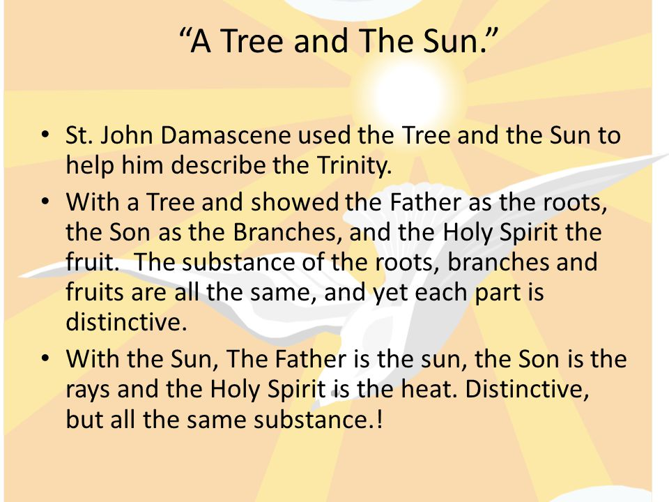 A Tree and The Sun. St. John Damascene used the Tree and the Sun to help him describe the Trinity.