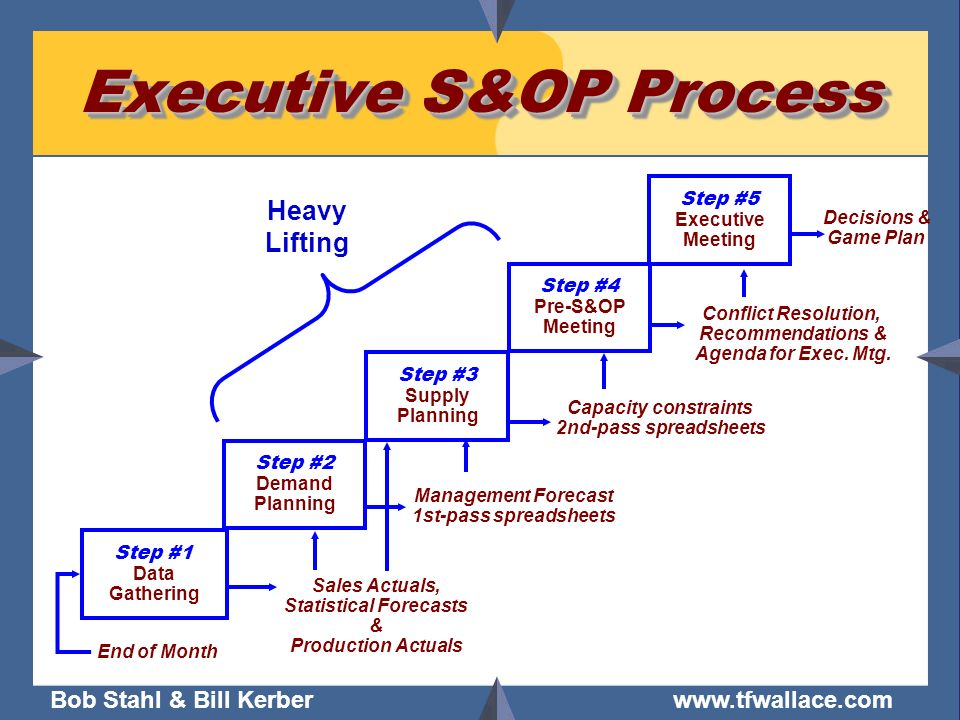 Executive S&OP Process