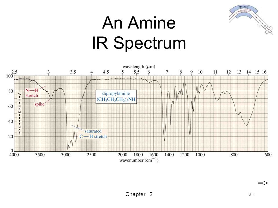 An Amine IR Spectrum => Chapter 12