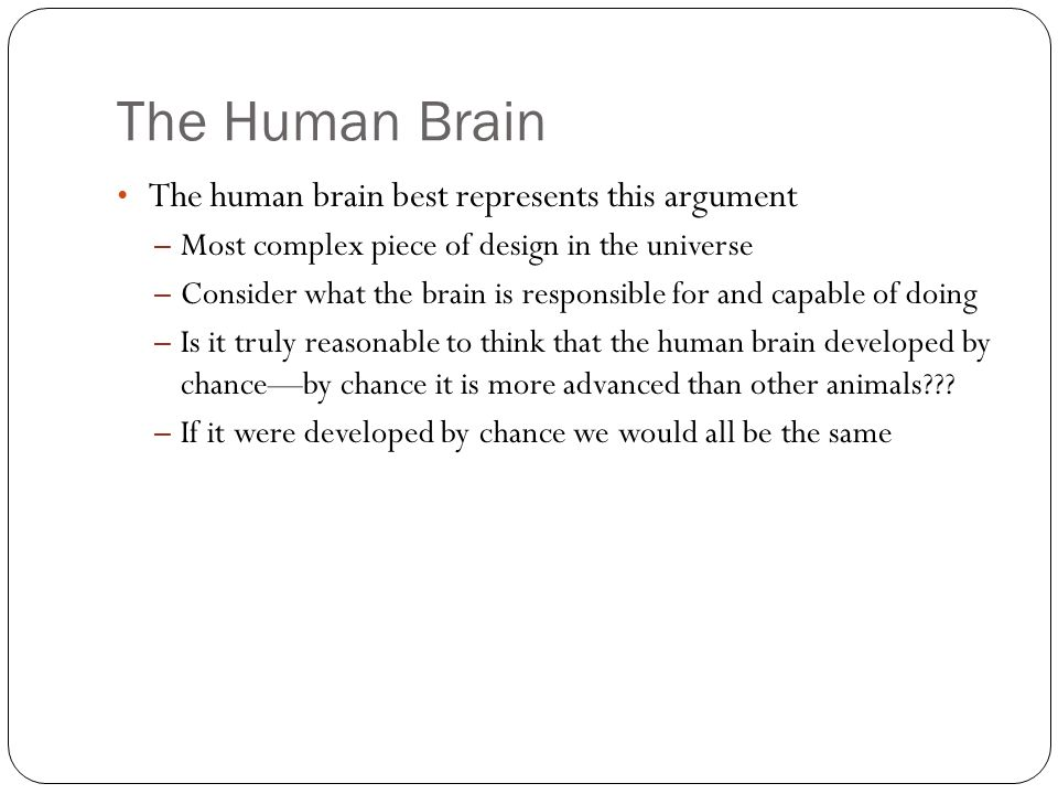 The Human Brain The human brain best represents this argument