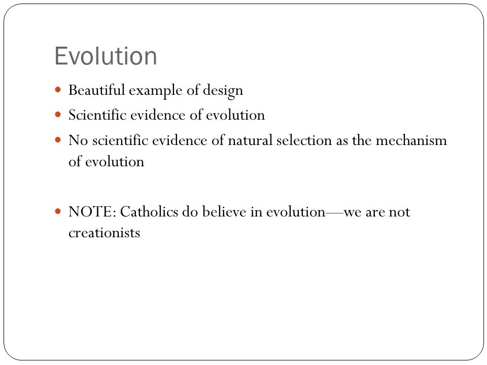 Evolution Beautiful example of design Scientific evidence of evolution