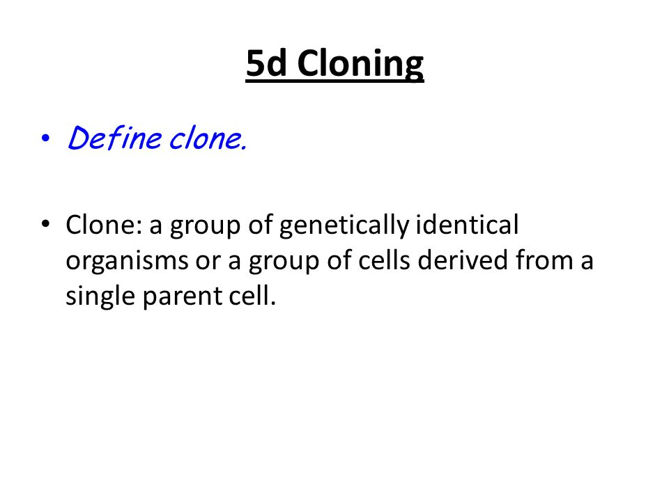 5d Cloning Define clone.