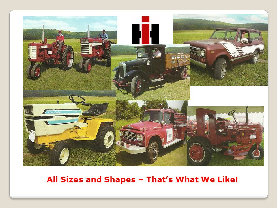 All Sizes and Shapes – That's What We Like!