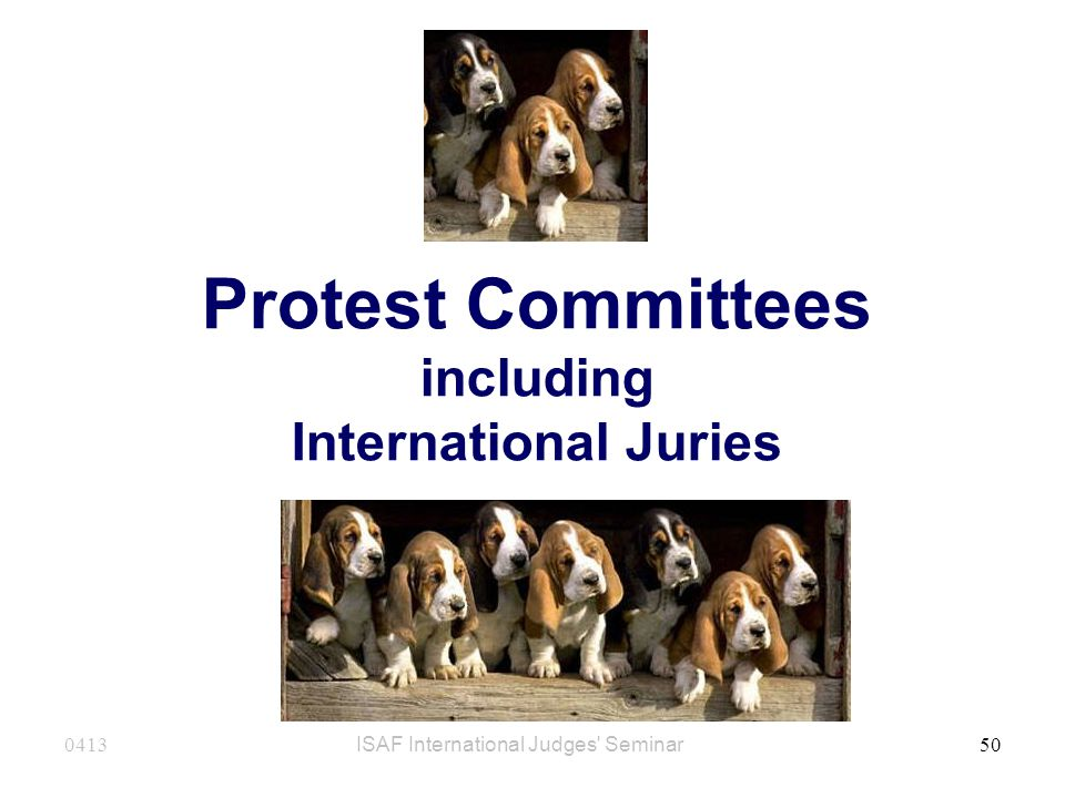 Protest Committees including International Juries