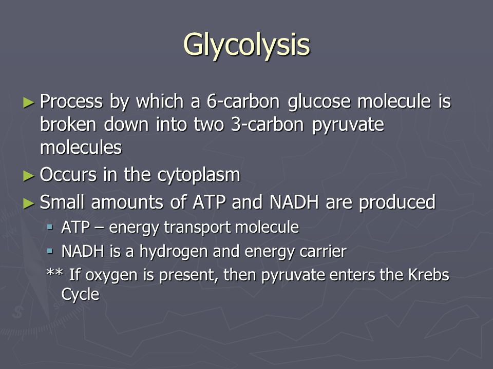 Glycolysis Process by which a 6-carbon glucose molecule is broken down into two 3-carbon pyruvate molecules.