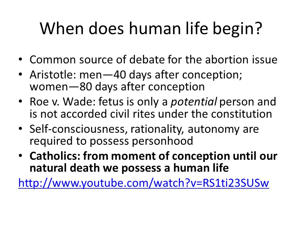 When does human life begin