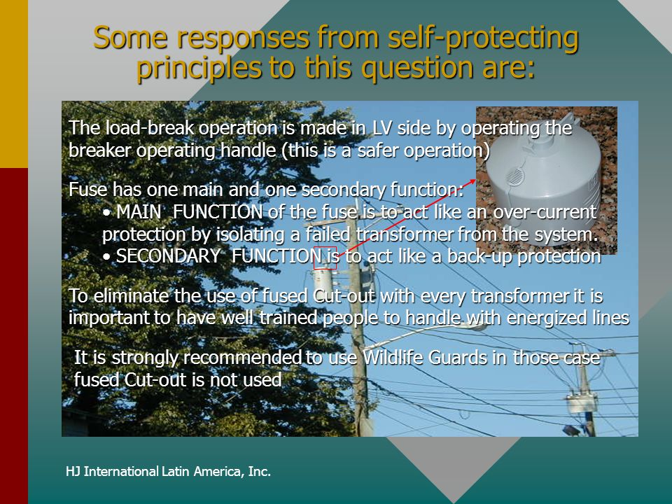 Some responses from self-protecting principles to this question are: