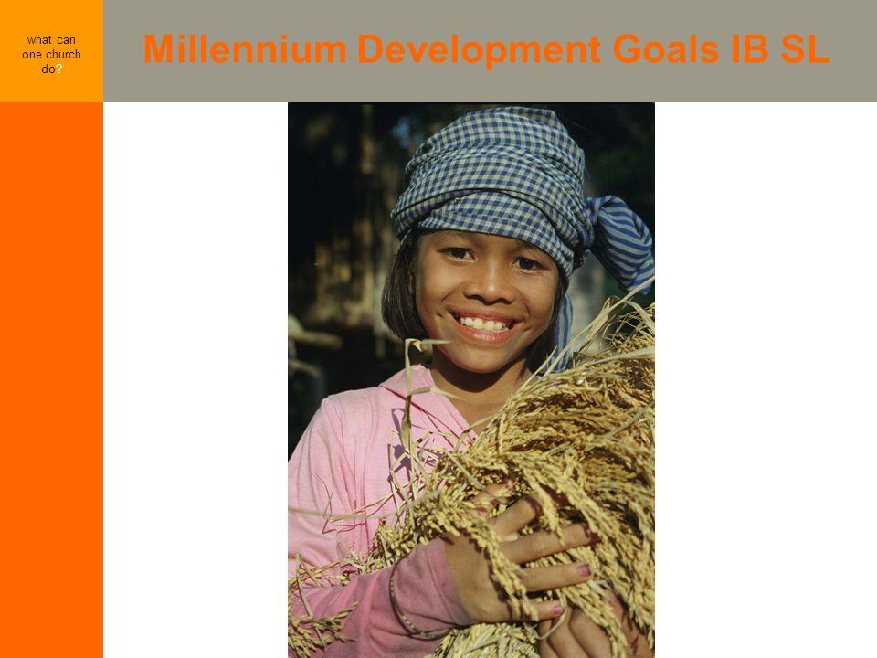 Millennium Development Goals IB SL