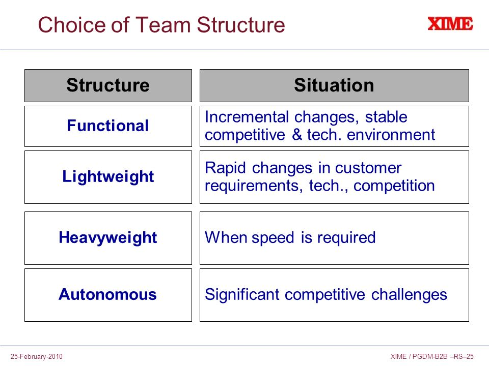 Choice of Team Structure