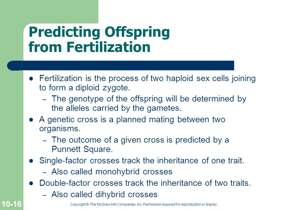 Predicting Offspring from Fertilization