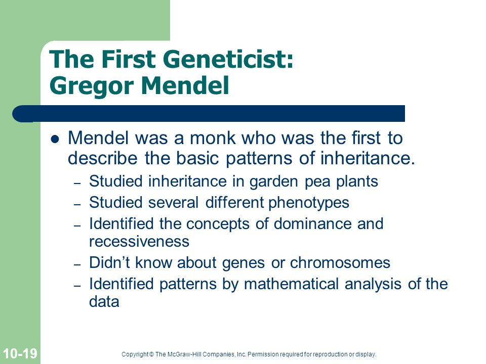 The First Geneticist: Gregor Mendel