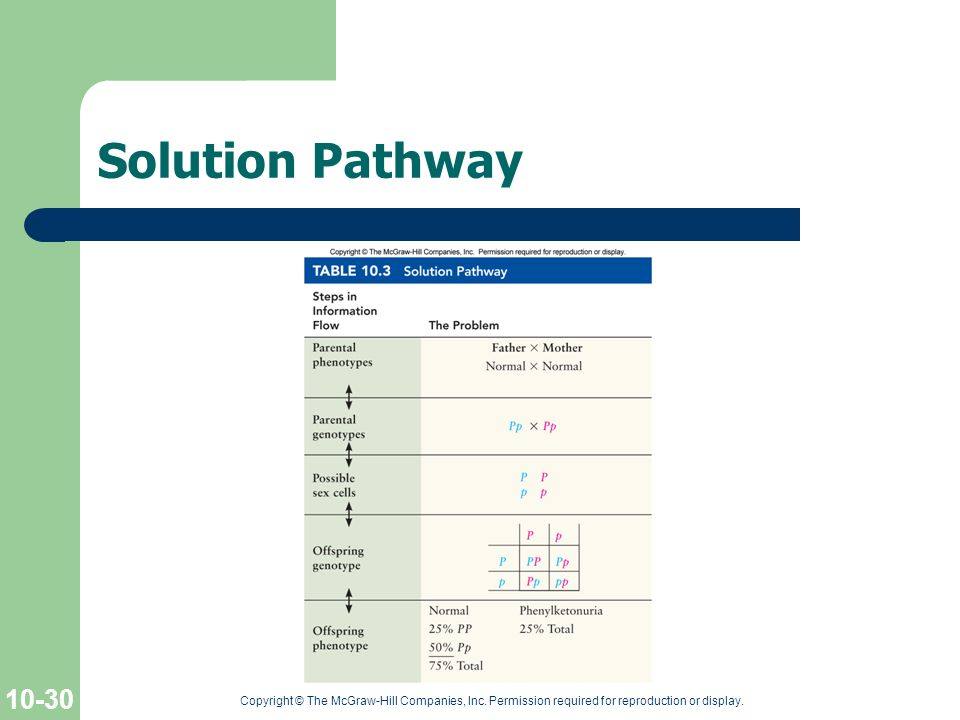 Solution Pathway