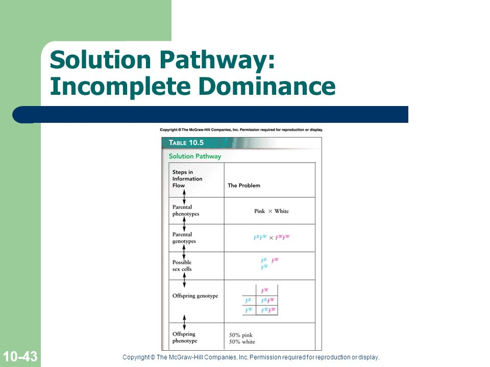 Solution Pathway: Incomplete Dominance