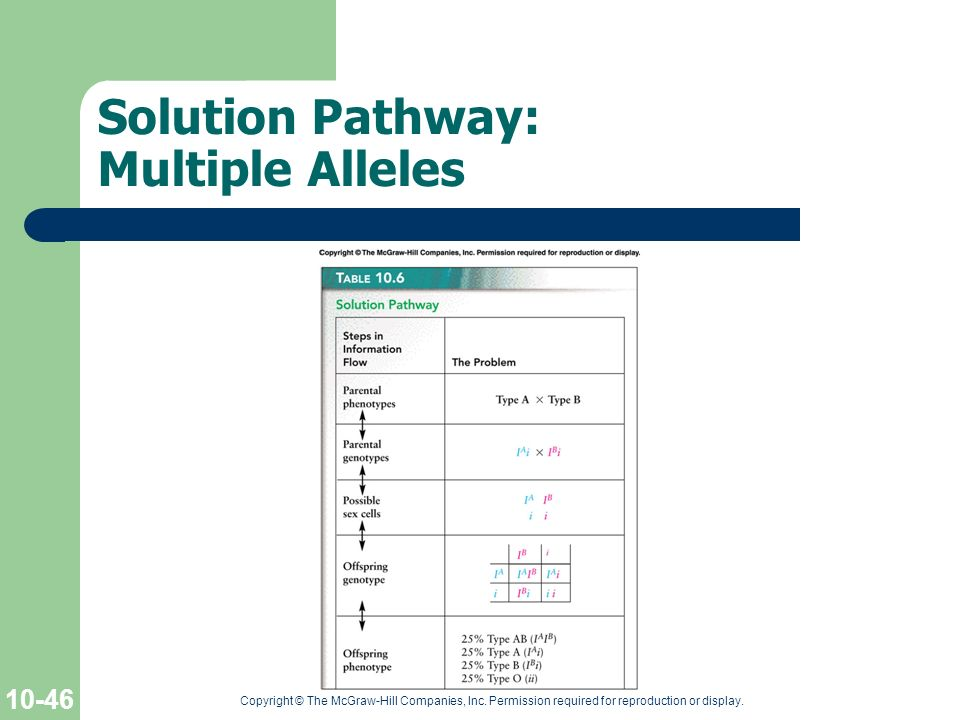 Solution Pathway: Multiple Alleles