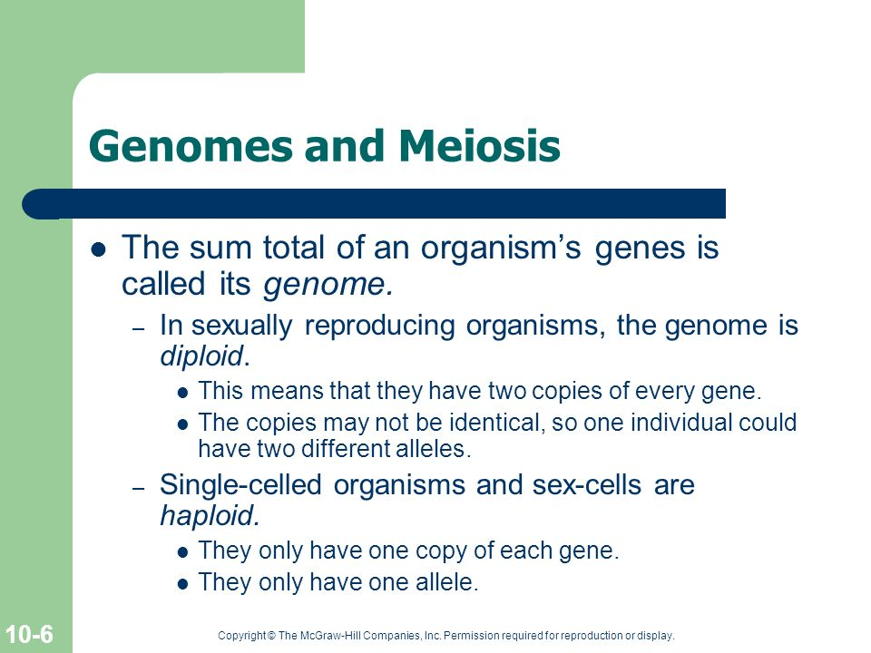 Genomes and Meiosis The sum total of an organism's genes is called its genome. In sexually reproducing organisms, the genome is diploid.