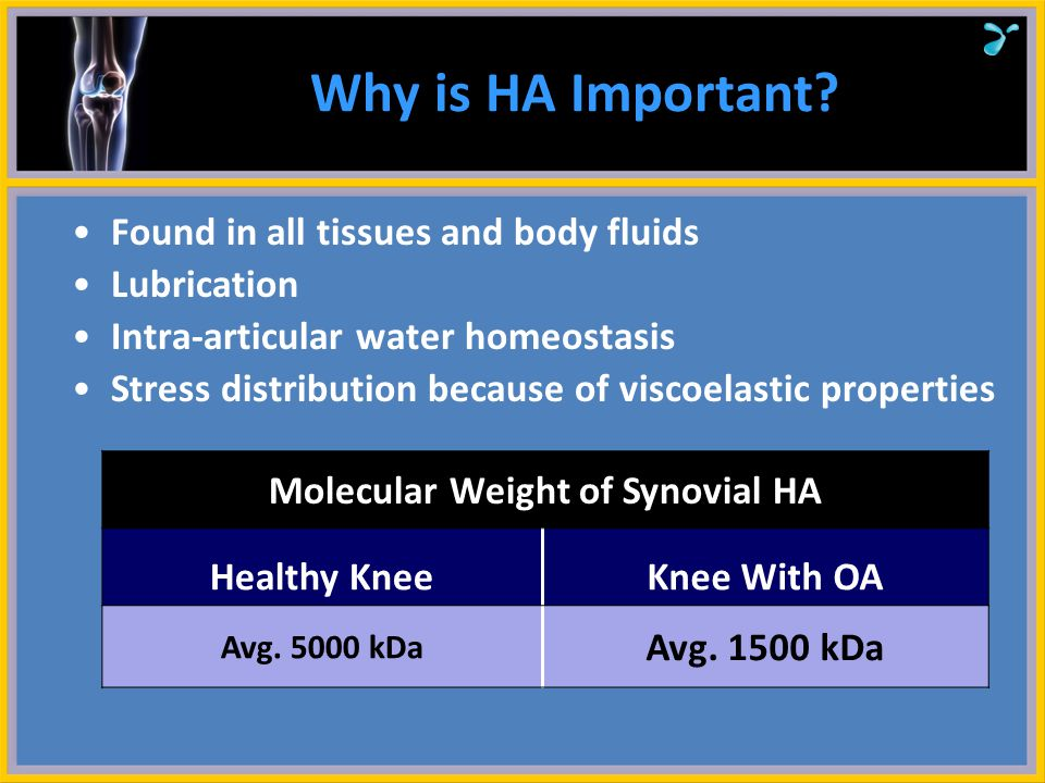Molecular Weight of Synovial HA