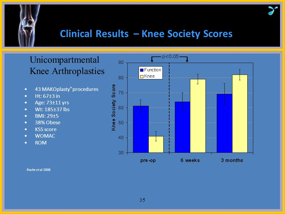 Clinical Results – Knee Society Scores