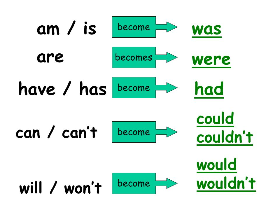 am / is was are were have / has had could couldn't can / can't