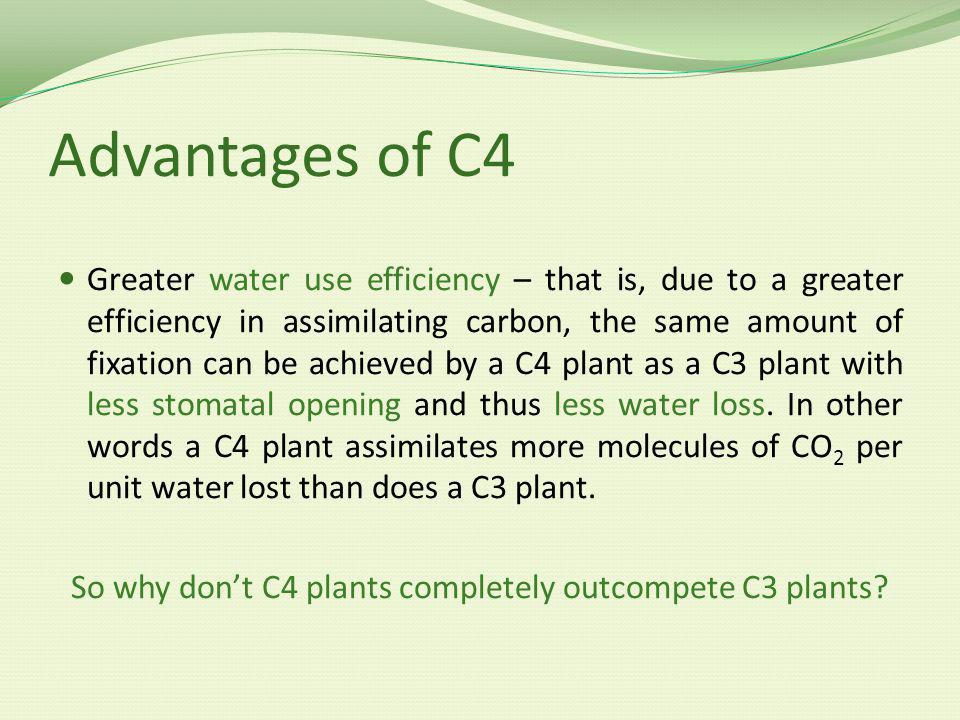 So why don't C4 plants completely outcompete C3 plants