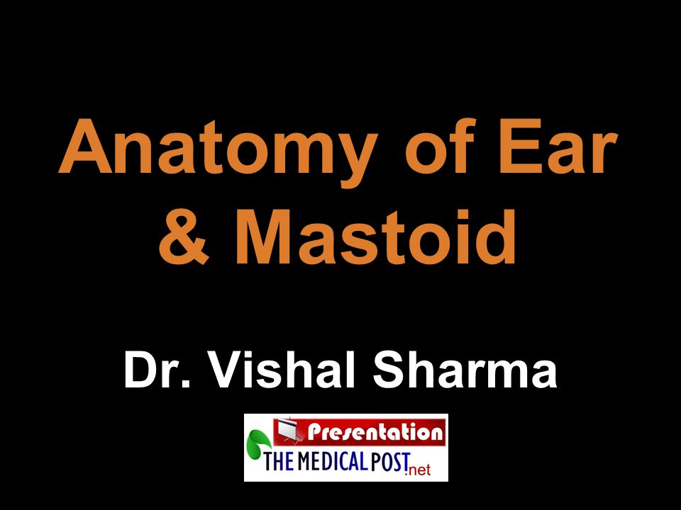 Anatomy of Ear & Mastoid