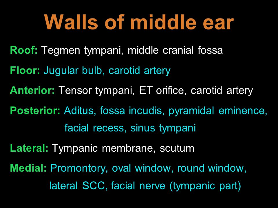 Walls of middle ear Roof: Tegmen tympani, middle cranial fossa