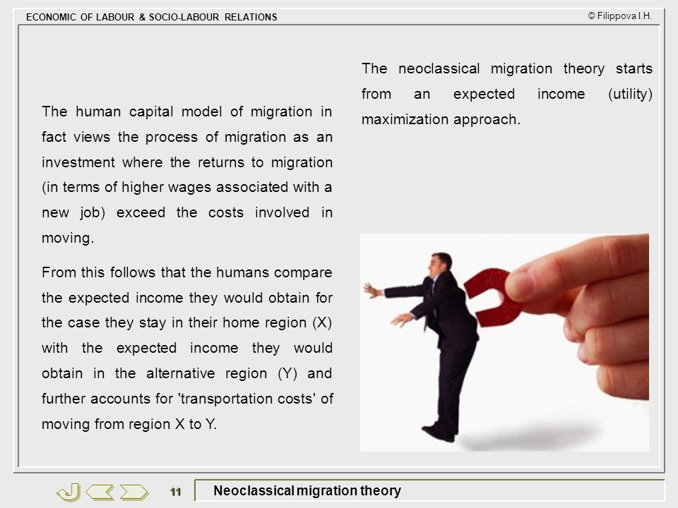 Neoclassical migration theory