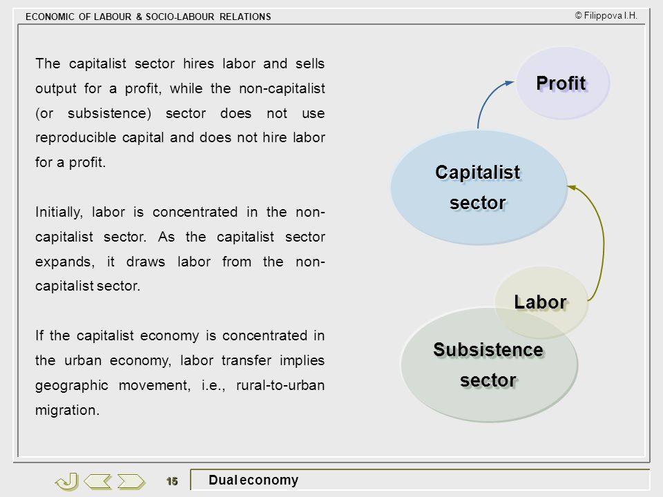 Profit Capitalist sector Labor Subsistence sector