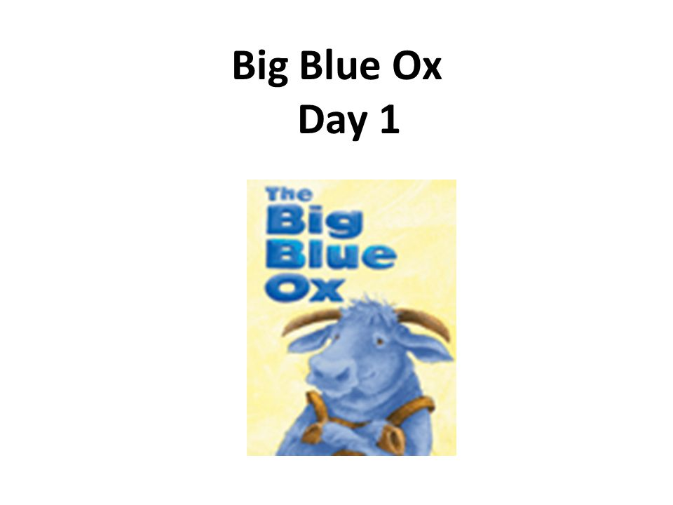 Big Blue Ox Day 1