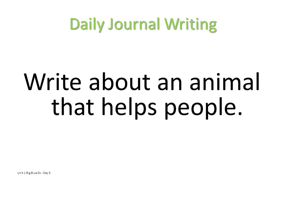 Write about an animal that helps people.