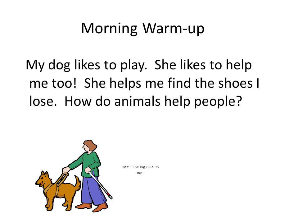 Morning Warm-up My dog likes to play. She likes to help me too! She helps me find the shoes I lose. How do animals help people