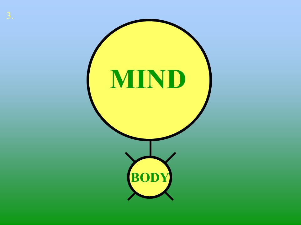 3. MIND MIND BODY BODY
