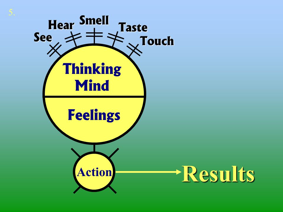 5. Smell Hear Taste See Touch Thinking Mind Feelings Results Action