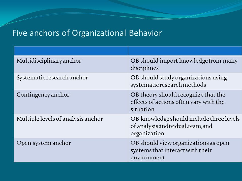 Five anchors of Organizational Behavior