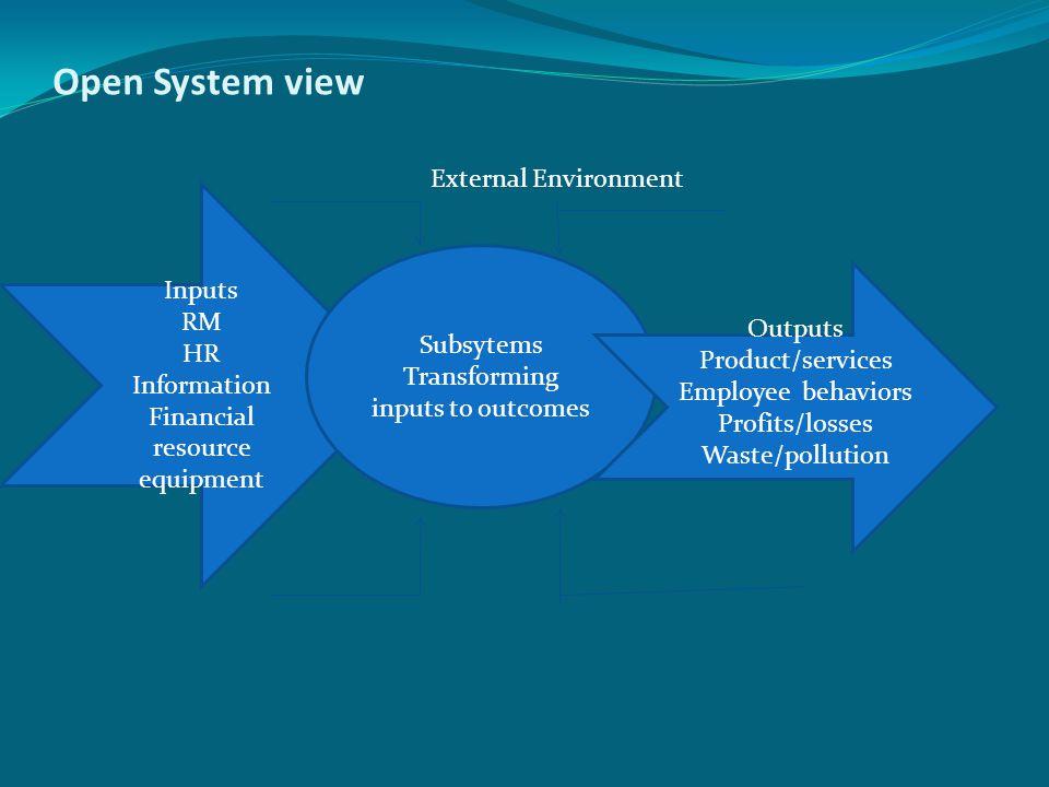 Open System view External Environment Inputs RM HR Information