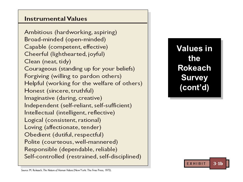 Values in the Rokeach Survey (cont'd)