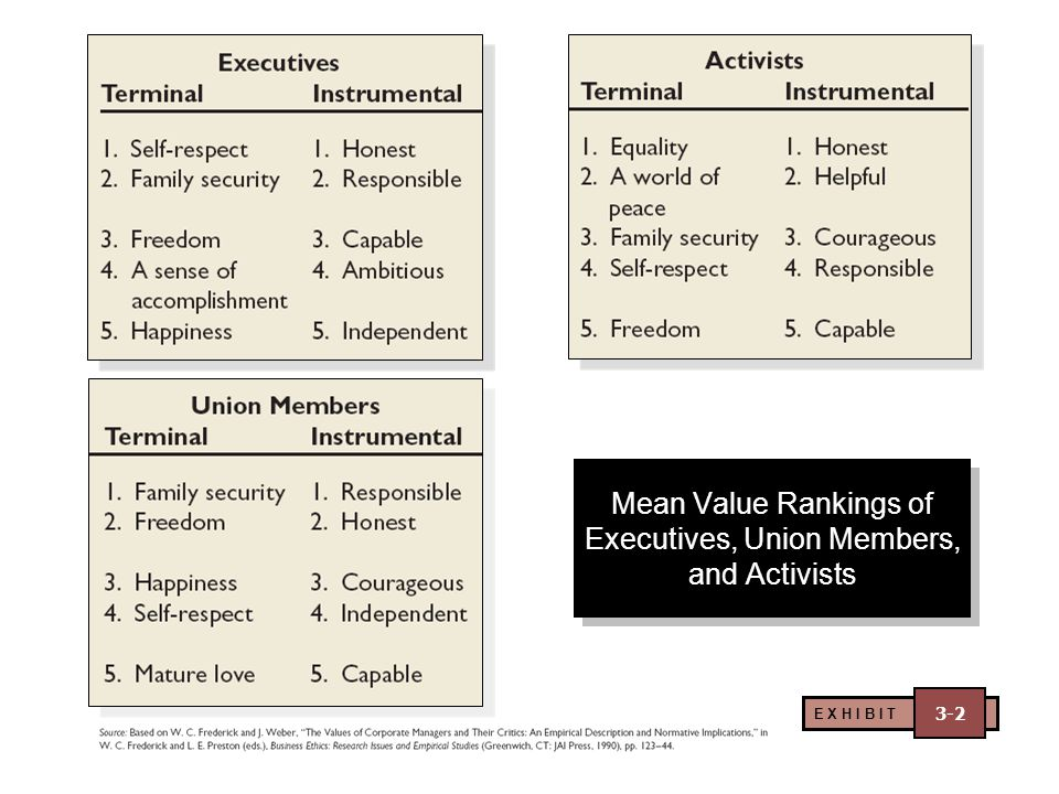 Mean Value Rankings of Executives, Union Members, and Activists