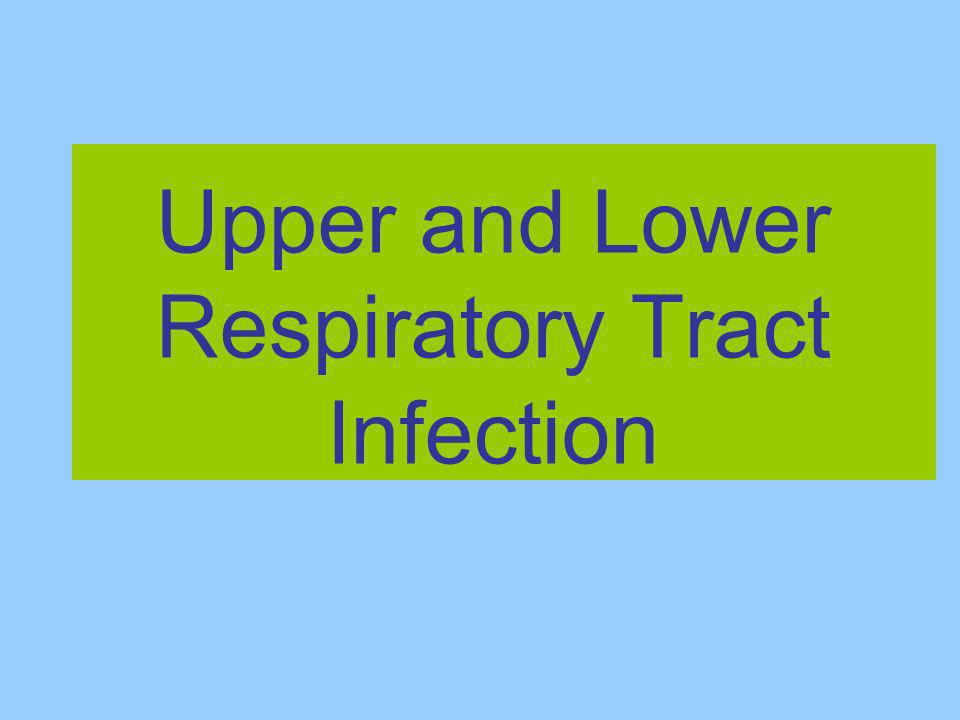 Upper and Lower Respiratory Tract Infection