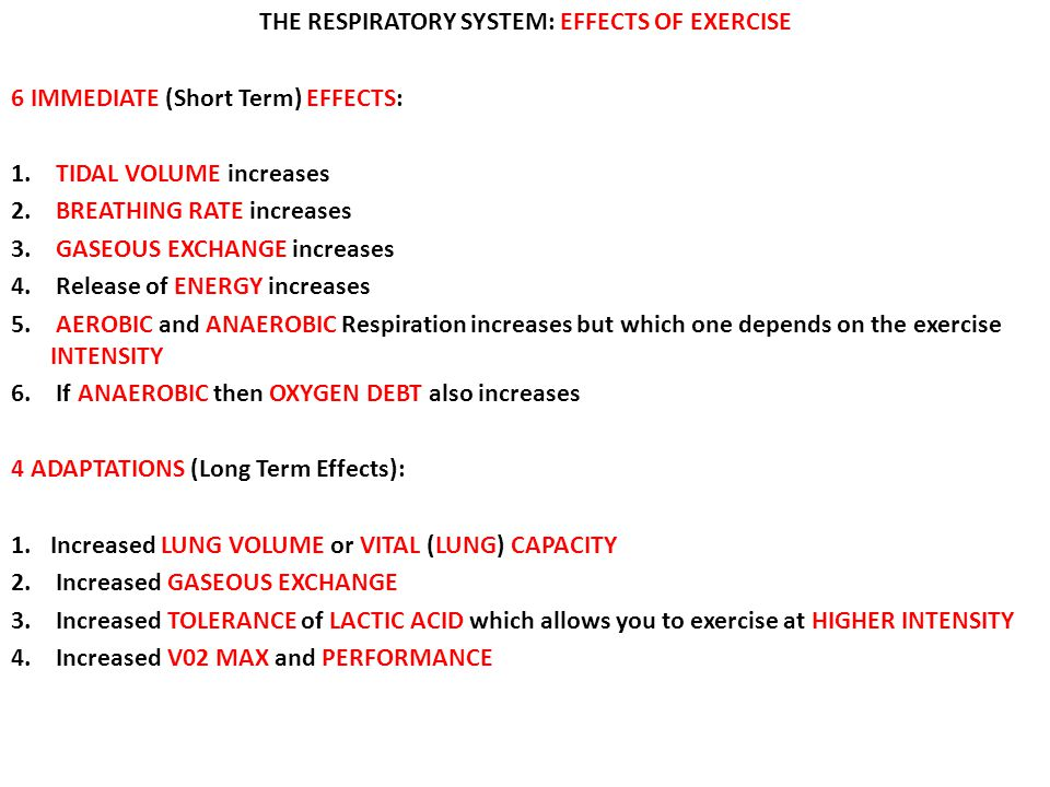 THE RESPIRATORY SYSTEM: EFFECTS OF EXERCISE