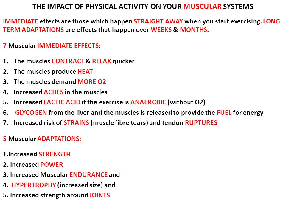 THE IMPACT OF PHYSICAL ACTIVITY ON YOUR MUSCULAR SYSTEMS